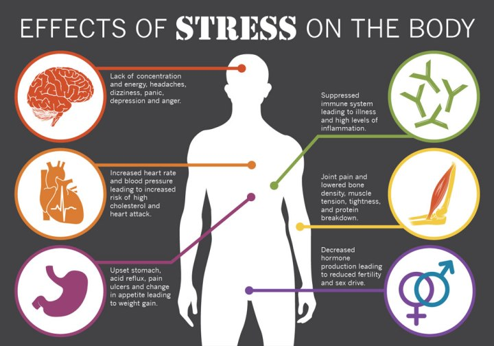 effects-of-stress-of-the-brain